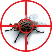 destruction-of-flies