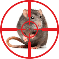 destruction-of-mice-and-rats